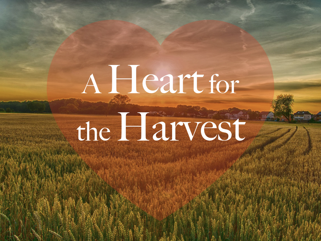 A Heart for the Harvest