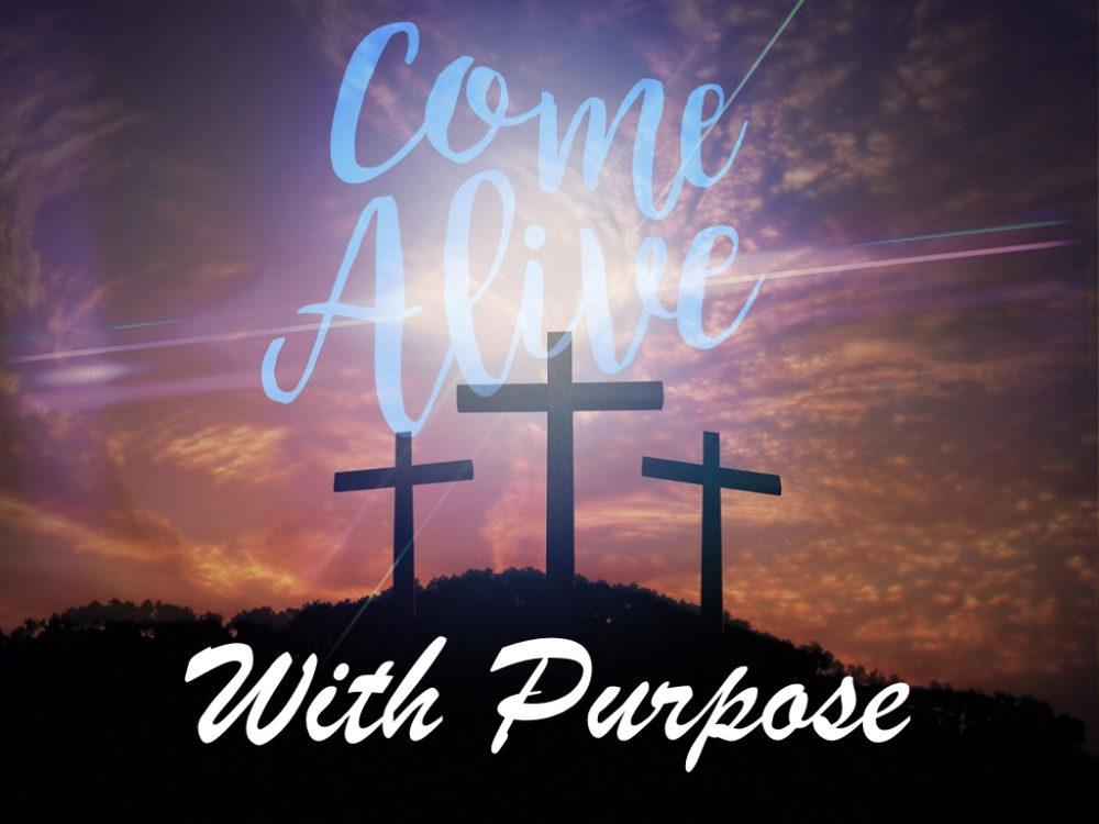 Come Alive with Purpose